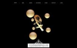 BenPinson 250x156 Web Design Portfolio